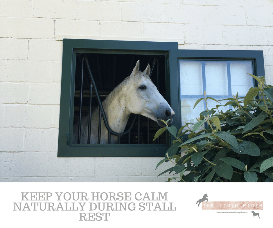 Keeping Your Horse Calm Naturally During Stall Rest